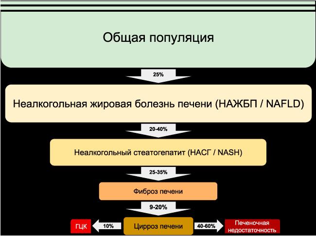 Динамика NAFLD