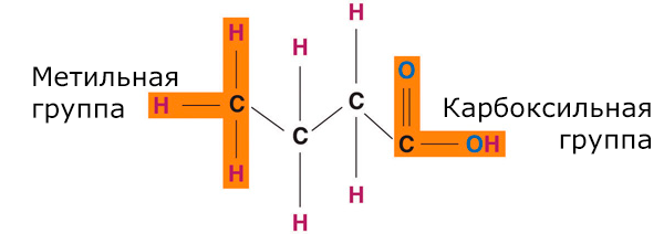 Общая структура жирных кислот