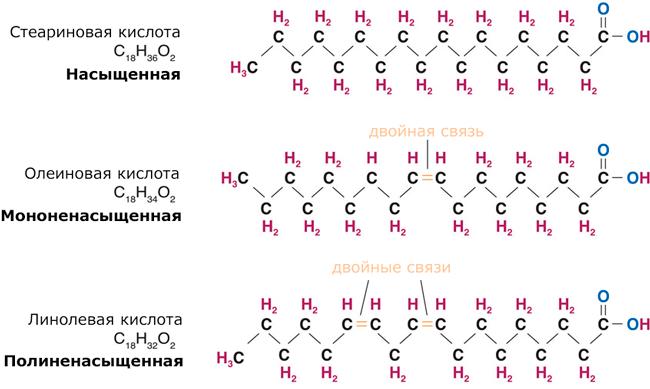 Структурные варианты жирных кислот